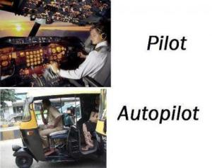 The difference of pilot and autopilot